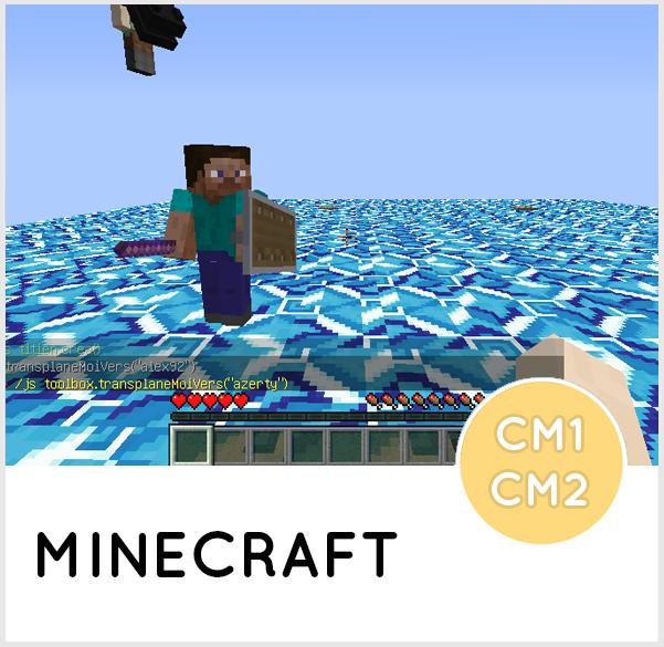 MINECRAFT CM1-CM2